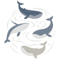 Lolli Living Removable Wall decal set Oceania Whale